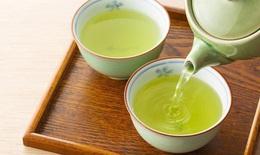 Uống chè xanh thế nào cho có lợi?