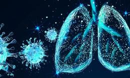 Phát triển thuốc điều trị COVID-19 nhắm vào phản ứng tế bào