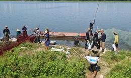Hàng chục người nhộn nhịp đánh bắt cá ở hồ Yên Sở dù đang giãn cách, không ai bị xử phạt