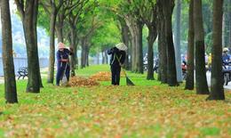 Thư Sài Gòn (số 25): Sài Gòn thu vẫn âm thầm hương sắc