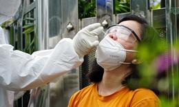 Trưa 12/9: BV Tâm thần TW 2 thêm 14 ca mắc COVID-19; Người đi mua sắm ở Bình Dương phải tiêm đủ vaccine