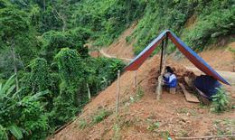 Chị em Bru – Vân Kiều nhờ ba dựng lán giữa rừng 'bắt sóng' học online