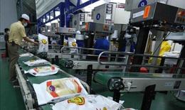 Ngành ngân hàng góp phần tháo gỡ khó khăn cho doanh nghiệp lúa gạo trong dịch COVID-19