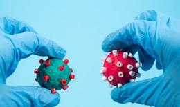 Biến thể R.1 đã lan tới 35 quốc gia, chuyên gia lo ngại về hiệu quả của vaccine