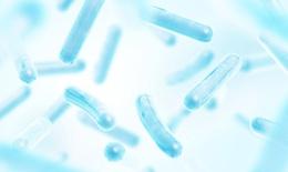Tạm biệt chứng rối loạn tiêu hóa do dùng kháng sinh dài ngày