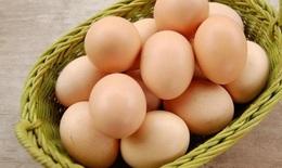5 bài thuốc có trứng gà trị kinh nguyệt không đều
