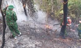 Nghệ An 2 vụ cháy rừng trong 1 ngày