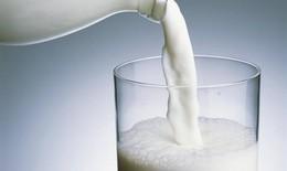 Cách dùng và bảo quản sữa tươi