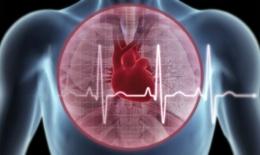 Uống rượu ít vẫn có nguy cơ rối loạn nhịp tim