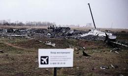 Vẫn tìm thấy nhiều thi thể tại hiện trường MH17