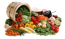 Một số vi chất dinh dưỡng với tăng trưởng và phát triển