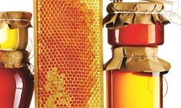 """Mật ong - """"thần dược"""" bảo vệ sức khỏe và sắc đẹp trong mùa đông"""