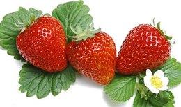 13 loại trái cây giúp giảm mỡ bụng cực hiệu quả