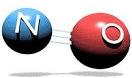 Nitric oxide- giảm gánh nặng bệnh tật cho bệnh nhân tim mạch
