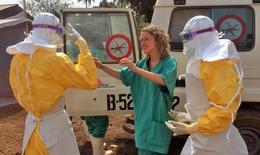 WHO họp khẩn cấp vì virus ebola