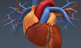 Phẫu thuật cứu sống bệnh nhân vỡ tim ngay tại buồng bệnh