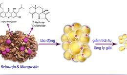 Ứng dụng tiến bộ sinh học phân tử trong kiểm soát thừa cân, béo phì