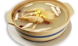 Món ăn trị bệnh từ thịt gà