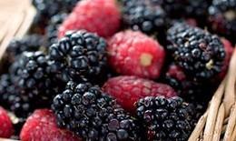 10 thực phẩm giảm nhẹ chứng táo bón