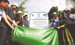 Quỹ 1 triệu cây xanh cho Việt Nam: Trồng cây xanh tại đồi Độc Lập - Điện Biên Phủ