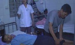 Rắn lục đuôi đỏ tấn công 2 người dân Hương Sơn