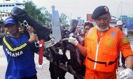 Tìm thấy 5 thi thể vẫn thắt dây an toàn trên ghế gần thân máy bay QZ8501