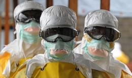 Gót chân asin của Ebola