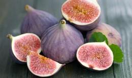 Giá trị dinh dưỡng và tác dụng phòng chống ung thư của quả sung