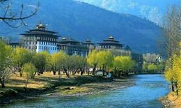 Công bố 10 đề cử Kỷ lục Phật giáo Thế giới đầu tiên