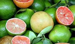 Lợi ích chữa bệnh và giảm cân của quả chanh đào