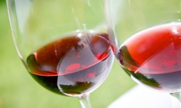 Khám phá bí mật sức khỏe tim mạch từ rượu vang