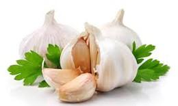 Thực phẩm nào giúp bạn tăng cường hệ miễn dịch trong mùa cúm?