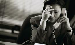 Thảo dược làm giảm stress