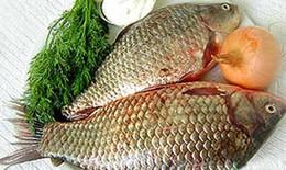 Cá chép - Bổ âm, chữa bệnh phụ nữ