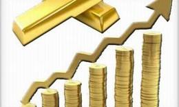 Tương lai mới cho giới khai thác vàng