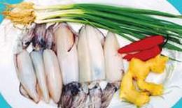 Cá mực - Món ăn ngon, vị thuốc quý