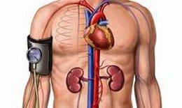 Phát hiện và xử trí hạ huyết áp