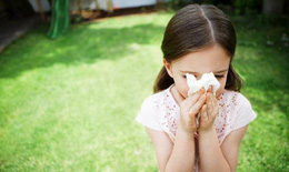 Món ăn giúp phòng bệnh cúm