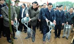 Chủ tịch nước phát động Tết trồng cây năm 2013