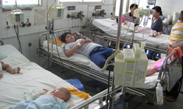 TP.HCM: Xử phạt 98 trường hợp vi phạm quy định phòng chống sốt xuất huyết