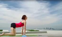 Bài tập Yoga giúp giảm mỡ bụng nhanh chóng