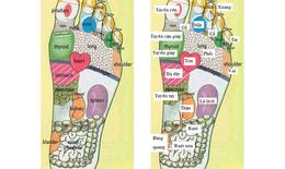 Tuyệt chiêu massage bàn chân giảm đau cơ thể & chữa bệnh