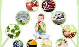 Top 10 thực phẩm tăng cường phát triển trí não cho bé yêu