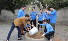 Đoàn cơ sở Sở Y tế Hà Tĩnh trồng cây tại Khu di tích văn hóa BV Lam Kiều