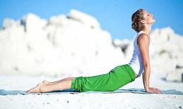 Bài tập Plank đánh tan mỡ bụng trong 1 tháng