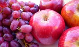 Nho, nghệ và táo giúp tiêu diệt tế bào ung thư tiền liệt tuyến
