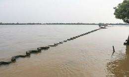 Thủ tướng yêu cầu kiểm tra phản ánh lấp sông Tiền xây công viên trái cây