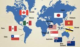 Hiệp định xuyên Thái Bình Dương CPTPP đã thấy vạch đích