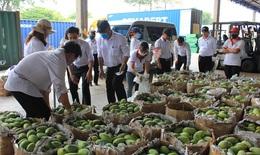 Vedan Việt Nam giải cứu xoài cho nông dân huyện Vĩnh Cửu, tỉnh Đồng Nai