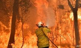 Sau cháy rừng, Australia sắp hứng chịu lũ lụt